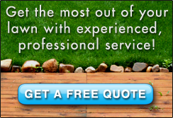 Get a free lawn care quote from Bee Green Lawn Care Service